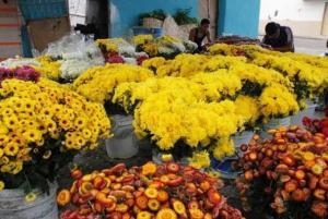 Llevarle flores a los difuntos saldrá caro este año