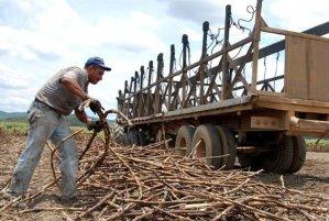 Fesoca: La exoneración de aranceles a los productos importados es un duro golpe a la producción nacional