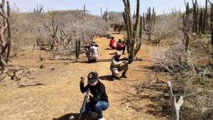 Alerta en Colombia… milicianos de Maduro practican ejercicios armados en la frontera (FOTOS)
