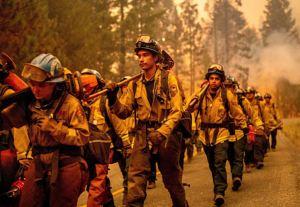 Bomberos de otros estados van a Montana para combatir incendio forestal