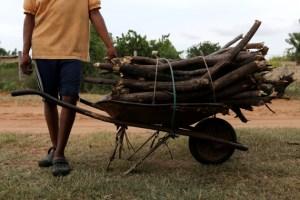 La dura historia de Ana María: Vende leña en Tucupita para sobrevivir y mantener a sus tres hijos