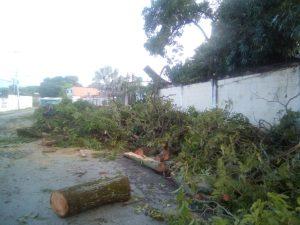 Fuertes vientos provocaron destrozos en capital de Guárico